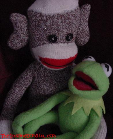Monkey porn Sock